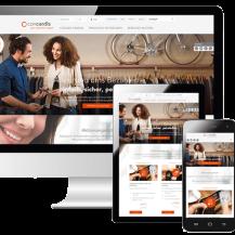 Concardis relauncht Website und präsentiert Produktkonfigurator