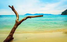 Zahlungsmittel im Urlaub und auf Reisen